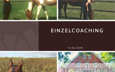 Einzelcoaching Juni 2018