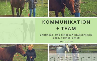 Zahnarztpraxis Kommunikation + Team